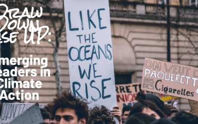 Climate Action: Race to Zero Innovation awards